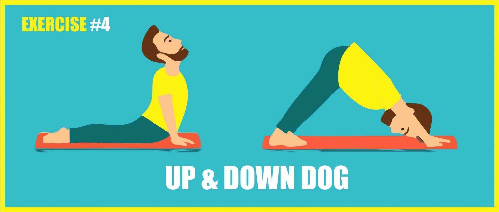 up gog down dog exercise